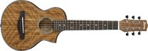 Ibanez EWP14WB OPN Open Pore Natural