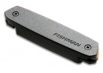Fishman Neo D Humbucking